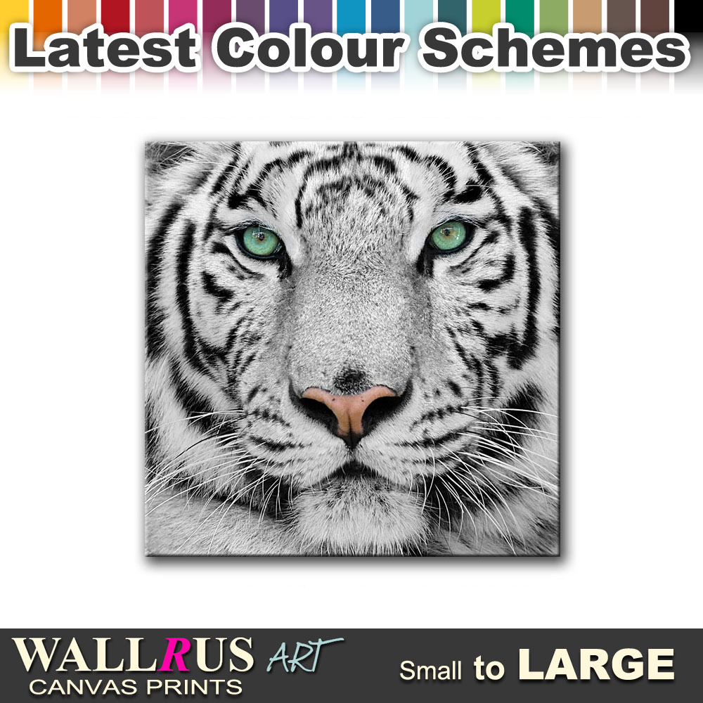 Siberian-Tiger-Eye-ANIMALS-Canvas-Print-Framed-Photo-Picture-Wall-Artwork-WA