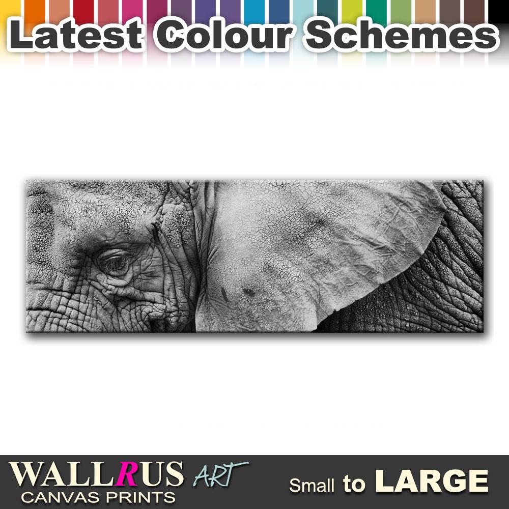 Elephant Wild ANIMALS  Canvas Print Framed Photo Picture Wall Artwork WA