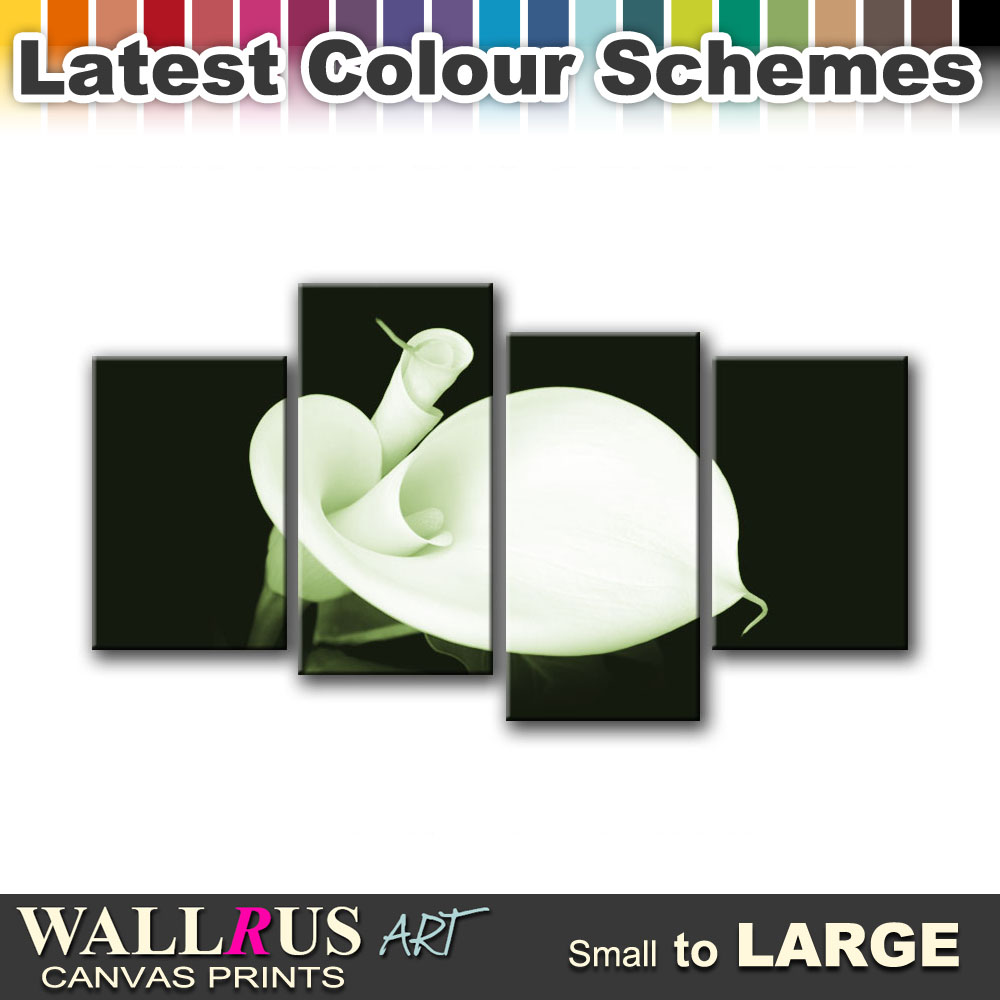 Calla Lily Flowers FLORAL  Canvas Print Framed Photo Picture Wall Artwork WA