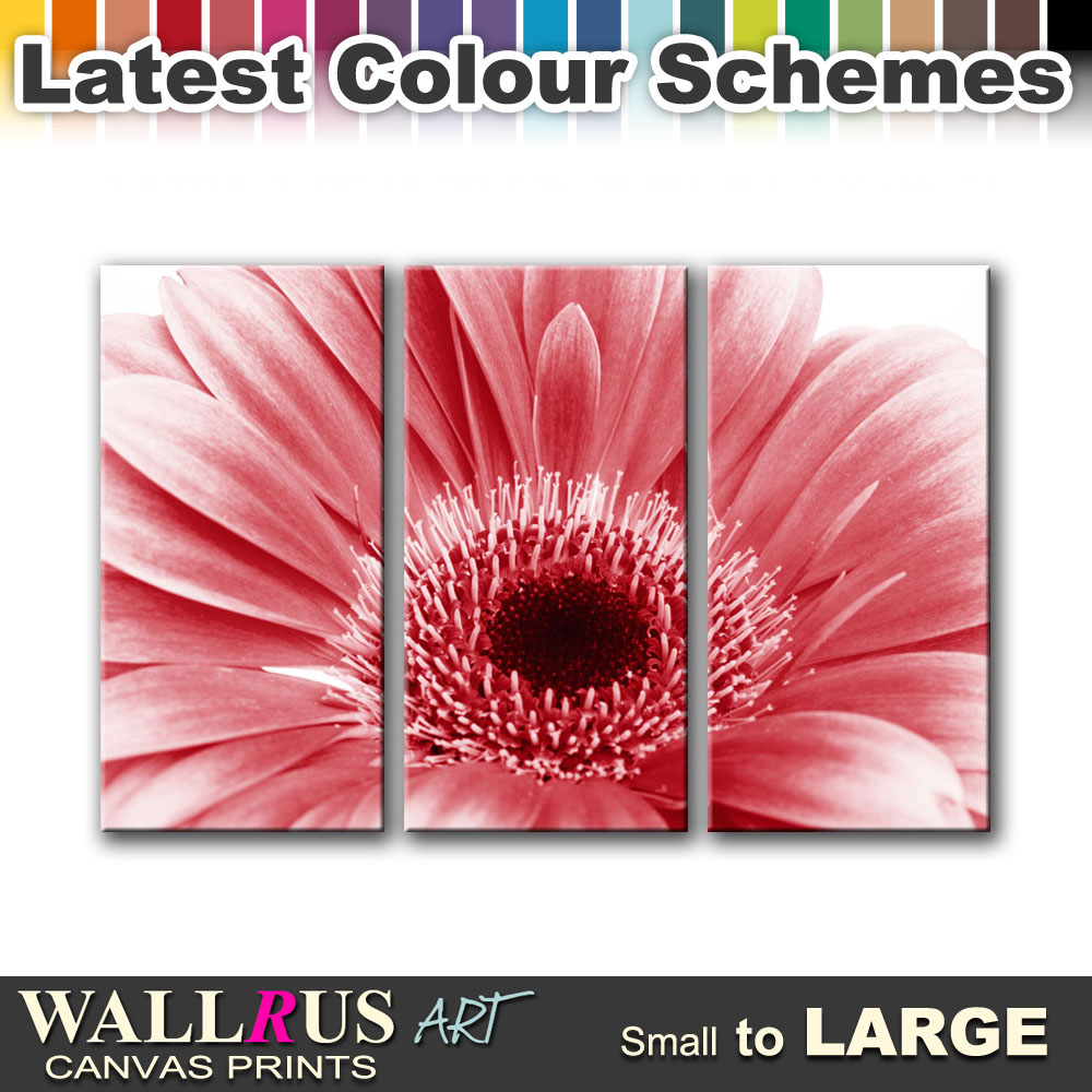 Flowers FLORAL & BOTANICAL Canvas Print Framed Photo ...