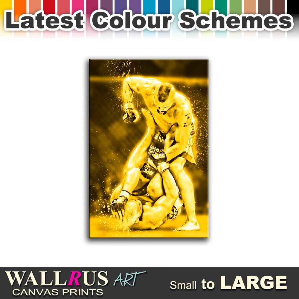 MMA Chuck Liddell Franklin Sports SINGLE CANVAS WALL ART Picture Print VA